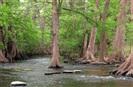 cibolo nature center