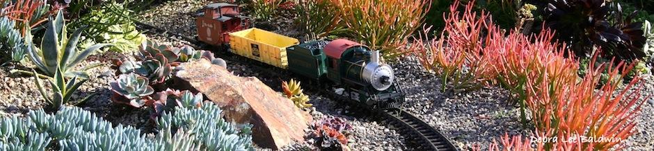 Succulent garden railway